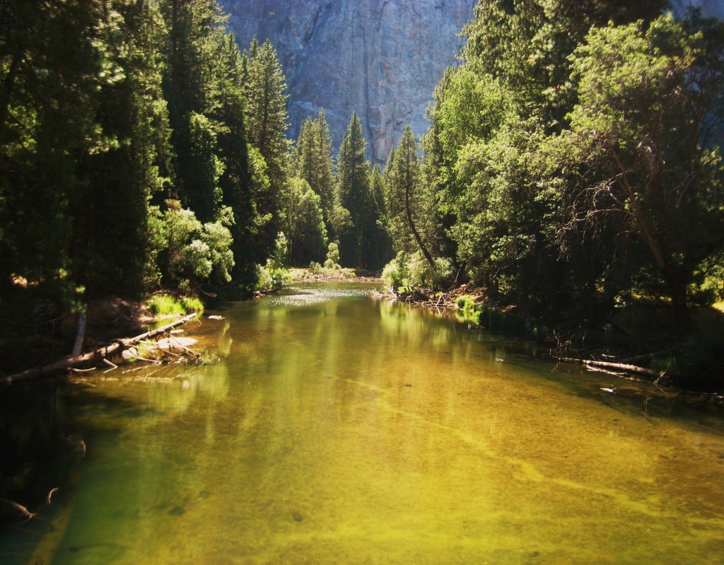 Yosemite Valley. Merced River