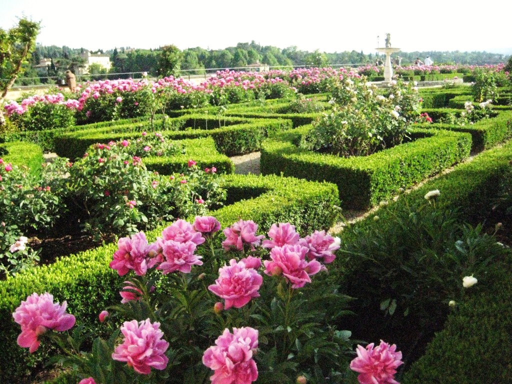 Rose garden, Boboli gardens, Florence, Italy