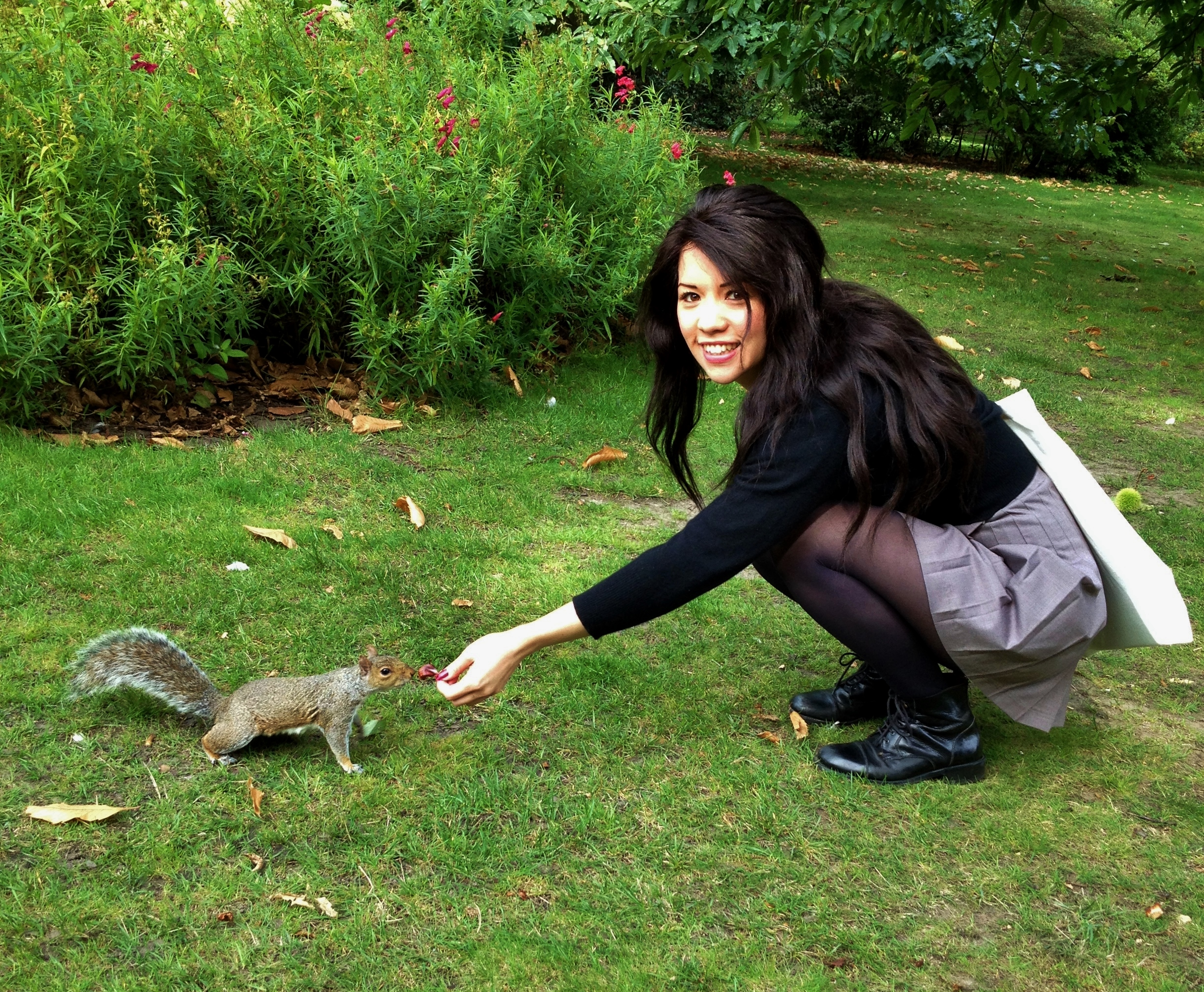 The squirrels in Greenwich Park