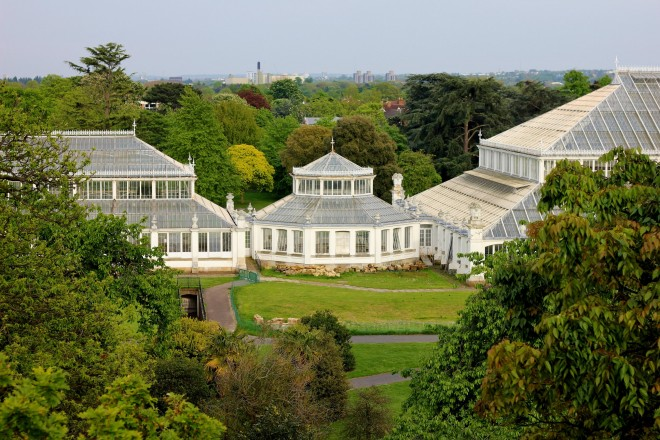 The Glasshouse in Kew Gardens