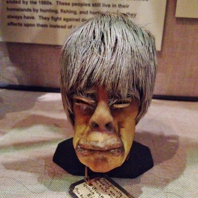 Shrunken heads, Pitt Rivers Museum