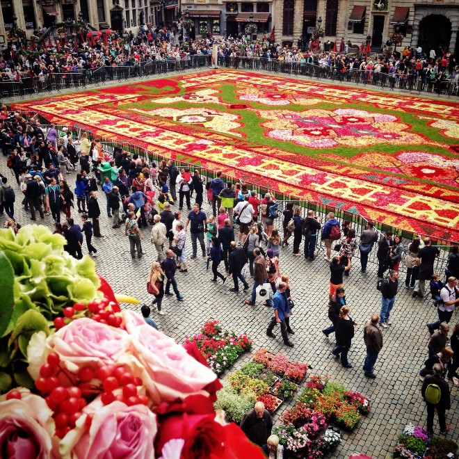 Brussels Flower Carpet, Grand Place 2014
