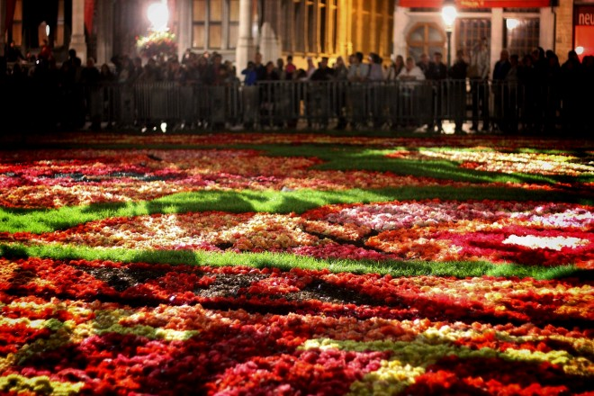 Floral Carpet in Brussels