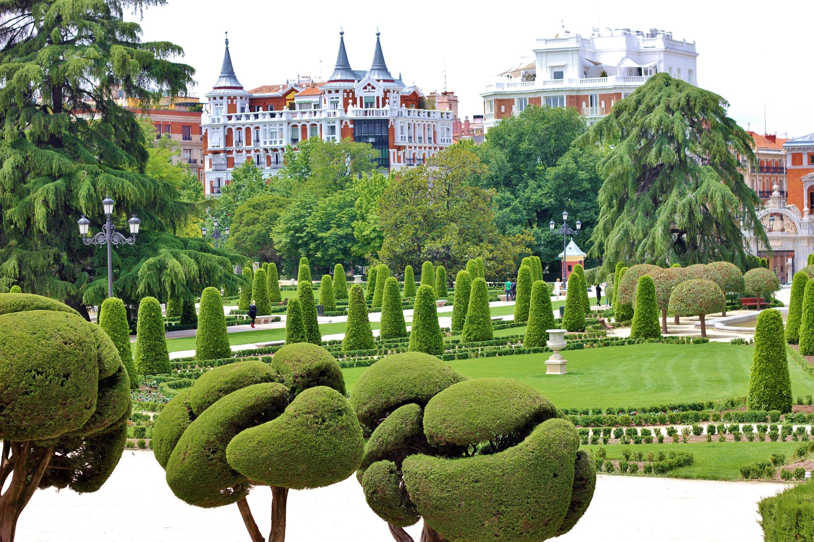 Retiro Park, Madrid, trees,