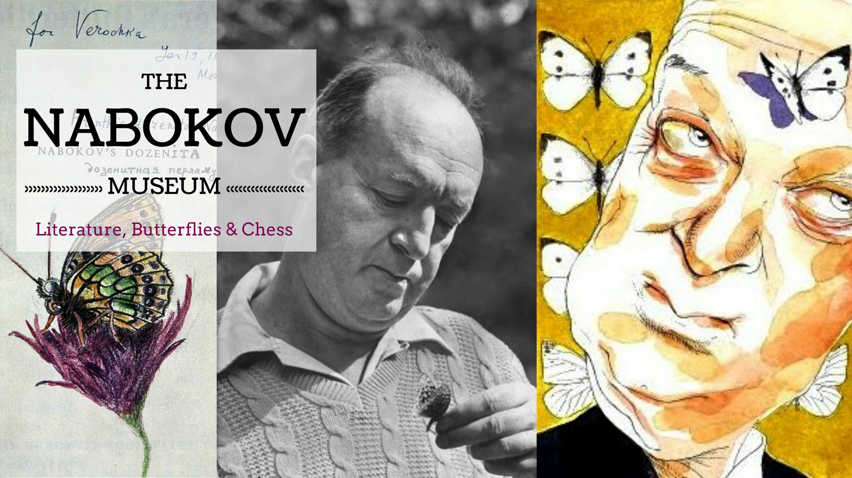 Nabokov Museum, Butterfly