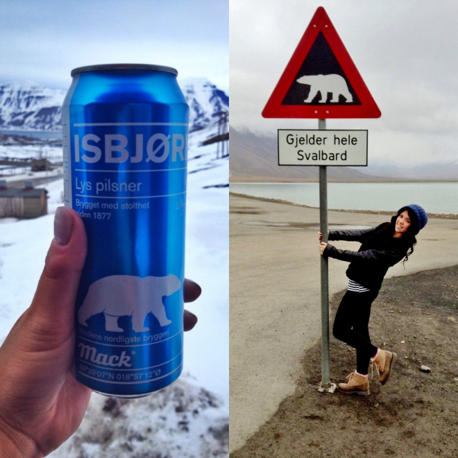 Polar bear beer in Svalbard