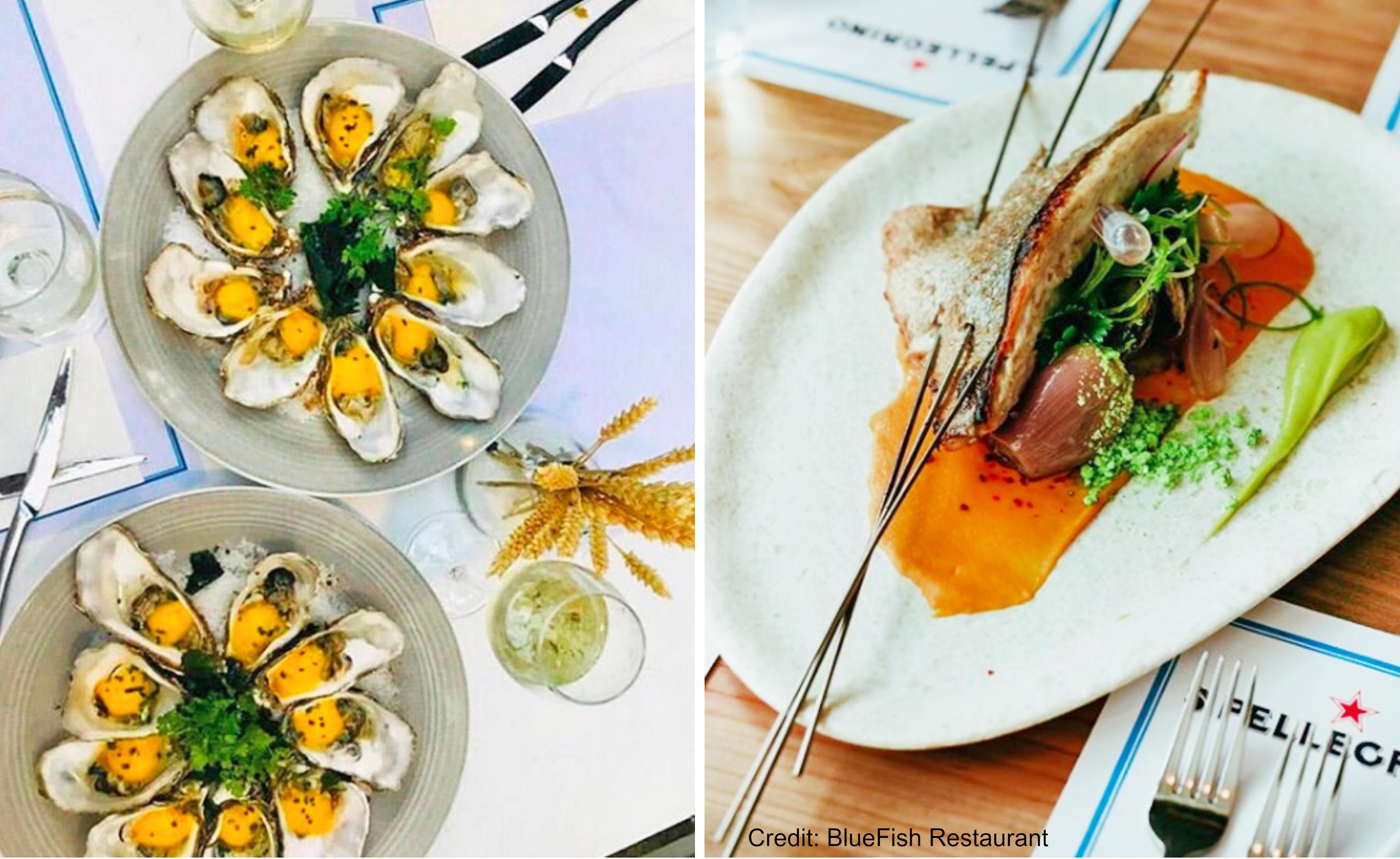 Bluefish Seafood Restaurant Athens Food